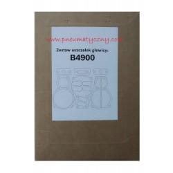 Zestaw uszczelek głowicy sprężarki B4900