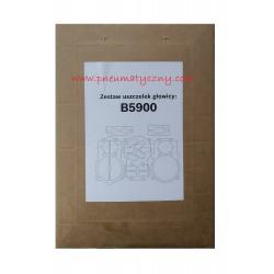 Zestaw uszczelek głowicy sprężarki B5900